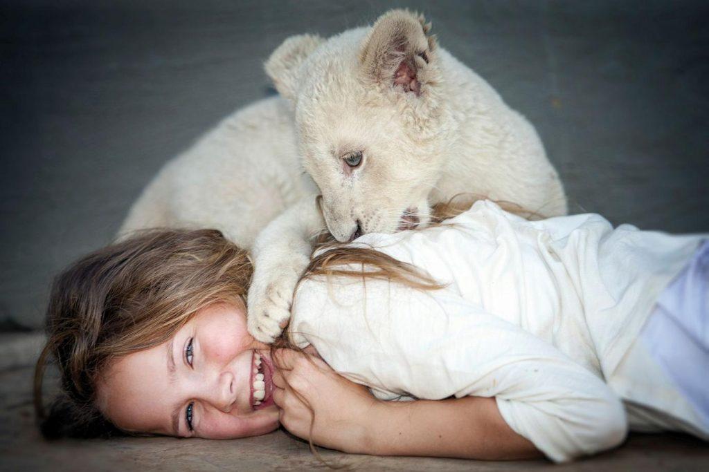 A Menina e o Leão. Foto: divulgação