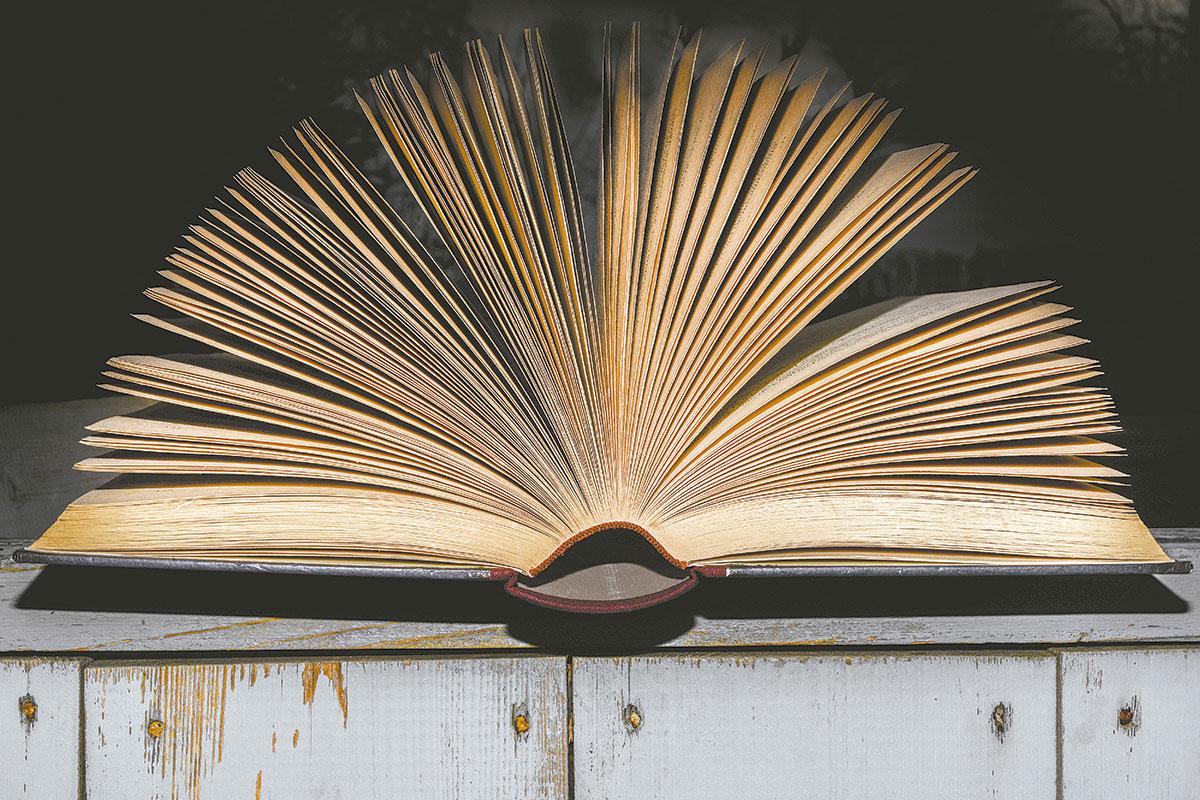 Fim de semana no calor dos livros da Flima. Foto: Pixabay