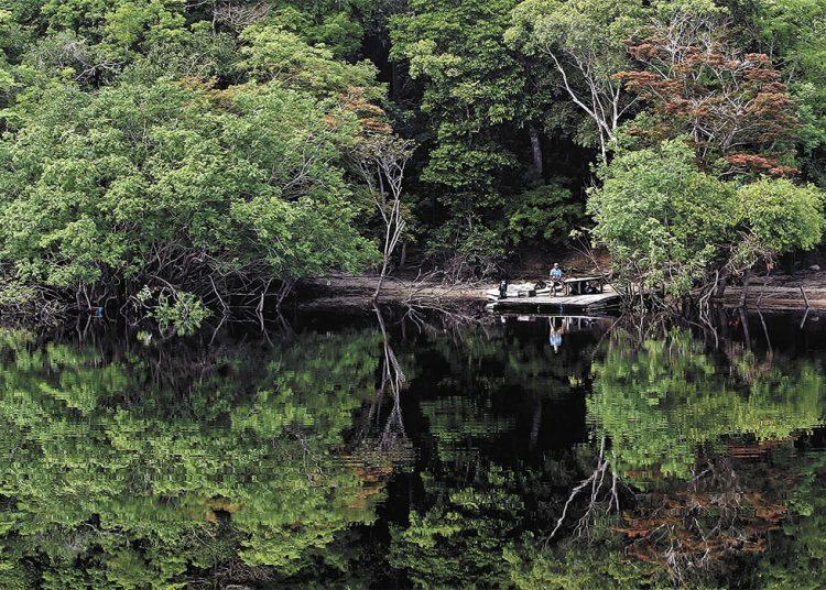 Amazônia. Jonne Roriz/Estadão