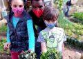 O professor Wagner Ramalho em atividade com crianças no projeto Prato Verde Sustentável. Foto: divulgação