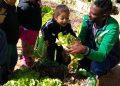 Aqui também, só que antes da pandemia, o professor Wagner Carvalho realiza atividade com crianças no projeto Prato Verde Sustentável. Foto: divulgação